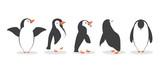 Fototapeta Fototapety na ścianę do pokoju dziecięcego - penguin characters in different poses set