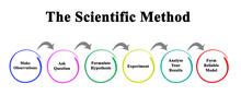 Scientific Method: From Observ...