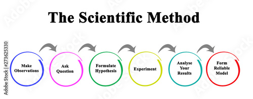 Fotomural  Scientific Method: From observation to model