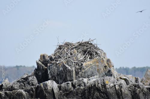 Photo Stick Made Osprey Nest on a Large Rocky Craig