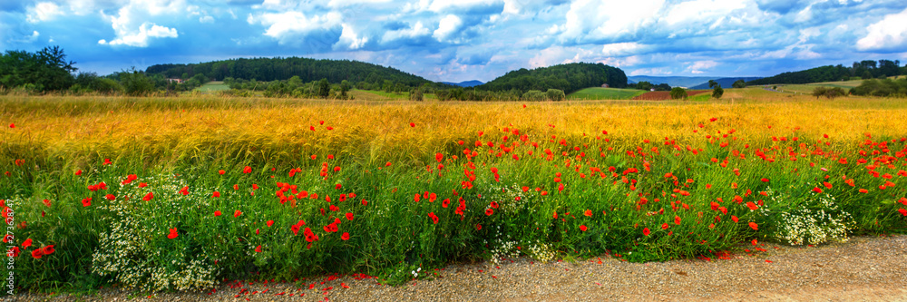 Fototapety, obrazy: Wheat field with poppies in summer