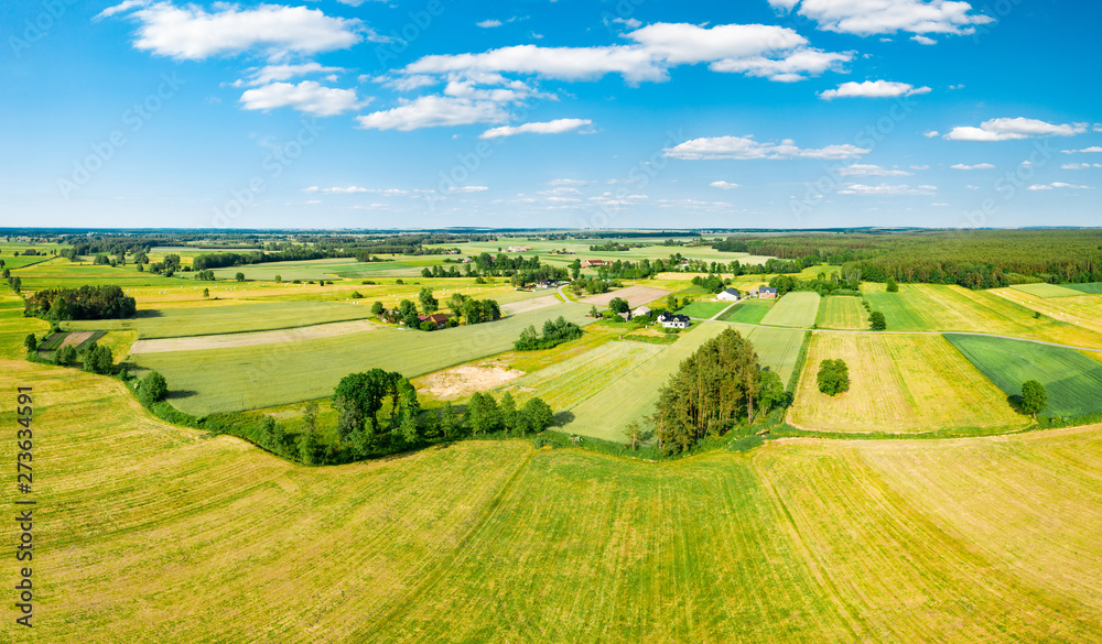 Fototapety, obrazy: Green fields and trees of Polish countryside stretch to the horizon under white clouds and blue sky