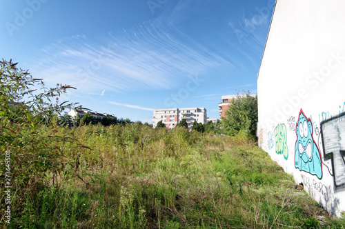 nature in industrial wasteland of  Paris suburb фототапет