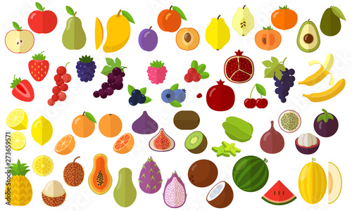 Pinturas sobre lienzo  fruits vector icon set