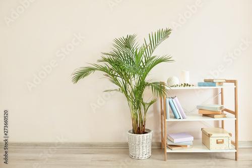 Fototapeta Modern shelf unit and houseplant near light wall obraz na płótnie