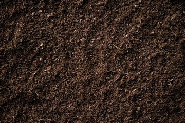 Fertile soil.
