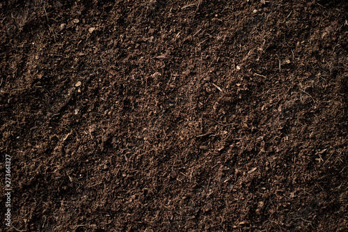 Fertile soil. Canvas Print