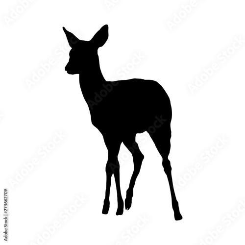Canvas Print Deer Silhouette