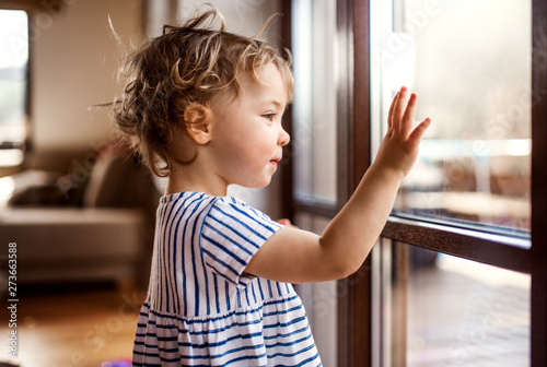 Canvastavla  A toddler girl standing by window indoors at home, looking out.