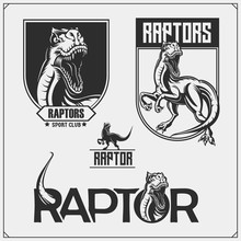 Raptor Dinosaur Mascot. Raptor...
