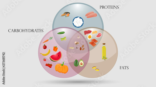 Fototapeta Proteins, fats and carbohydrates scheme. Nutrition vector illustration obraz