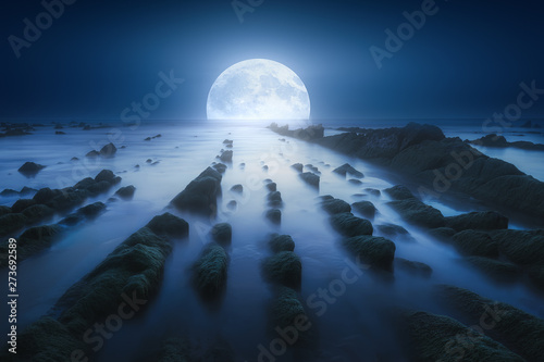 Poster Bleu nuit seascape at night with full moon over the sea