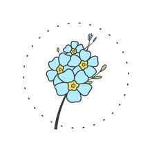 Forget Me Not Flower. Logo For Spa And Beauty Salon, Boutique, Organic Shop, Wedding, Floral Designer, Interior, Photography, Cosmetic. Botanical Floral Element.