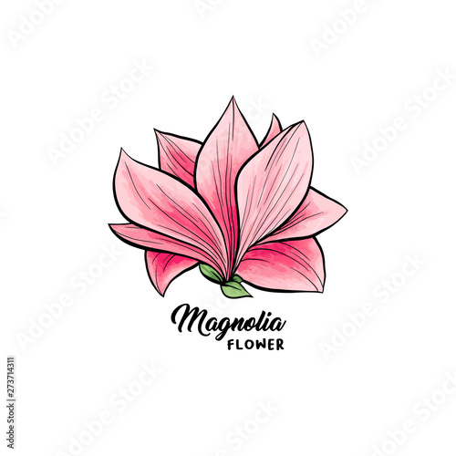 Magnolia Flower In Blossom Beautiful Home Decor And