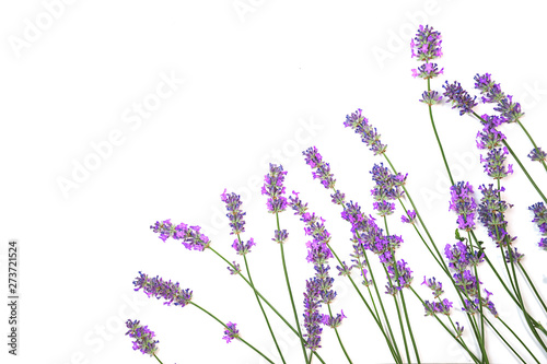 Spoed Fotobehang Lavendel Lavender flowers pattern isolated on white background. Flat lay, top view, copy space. Selective focus.
