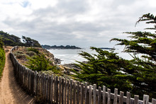 Seaside Trail Between Fence And Cypress Trees With Ocean View