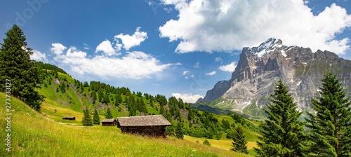 Swiss beauty, chalet on the meadows in Grindelwald valley, under Wetterhorn mount, Bernese Oberland,Switzerland,Europe #273733127