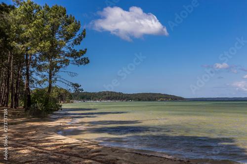 Fotografia lac de biscarosse