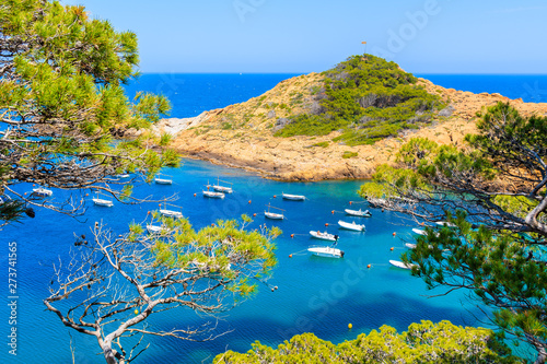 Photo  Boats in beautiful sea bay with azure water near Sa Tuna village, Costa Brava, S