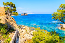 Coastal Path Along Blue Sea Near Cap Roig, Costa Brava, Spain