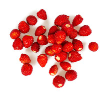 Wild Strawberries Isolated On ...