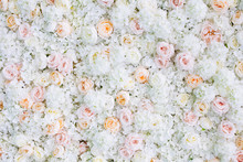 Flowers Wall Background With W...