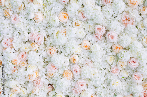Fond de hotte en verre imprimé Fleur Flowers wall background with white and light orange roses.