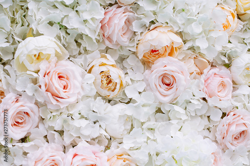 Flowers wall background with white and light orange roses. Canvas Print