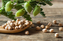 Uncooked Dried Chickpeas In Wooden Spoon With Raw Green Chickpea Pod Plant On Wooden Table. Heap Of Legume Chickpea Background