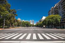 Pedestrian Crossing Over Av. P...