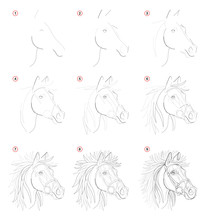 Creation Step By Step Pencil Drawing. Page Shows How Learn To Draw Sketch Of Imaginary Horses Head. Print For Artists School Textbook. Developing Skills For Design. Hand-drawn Vector Image.