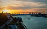 Fototapeta Sawanna - The Sydney Lanier Bridge across the Savannah River