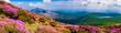 ミヤマキリシマ咲く韓国岳から見る高千穂峰