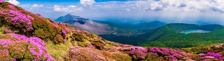 Panel Szklany Do kuchni ミヤマキリシマ咲く韓国岳から見る高千穂峰と錦江湾