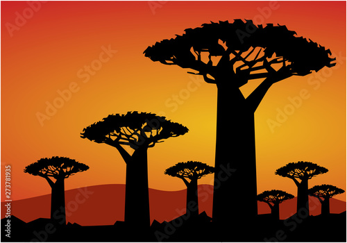 baobab tree on wpap popart style Poster Mural XXL