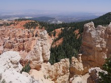 Imposing Rock Formations With Pine And Spruce Trees Growing In The Cliffsides At Bryce Canyon National Park, Utah.