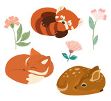 Fototapeta Fototapety na ścianę do pokoju dziecięcego - Cute vector illustration with little fox, red panda and deer isolated on white background. Can be used as elements for banner, poster, greeting card, postcard and print.
