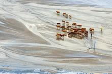 Inner Mongolia WuLanBu Series Of Herds