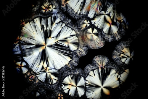 Abstract flowers Wallpaper Mural