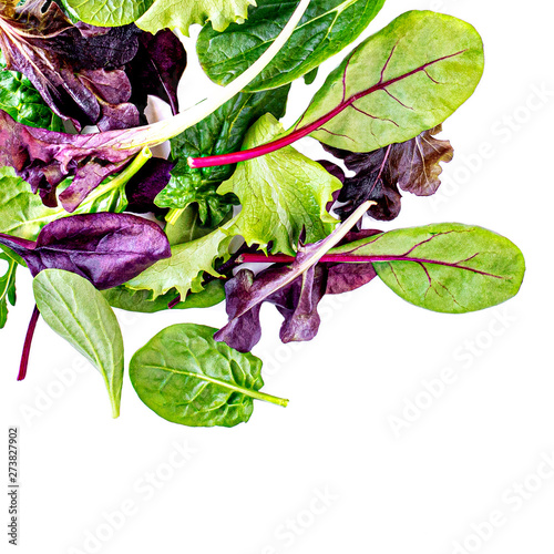 Poster Ecole de Danse Flying Salad Leaves isolated on white background. Fresh mixed salad with arugula, lettuce, spinach