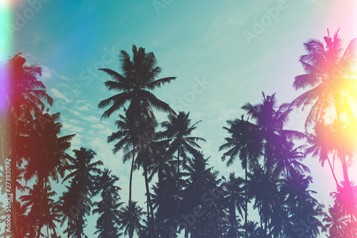 Poster Prune Palm trees on ocean island beach vintage toned with film distress flare