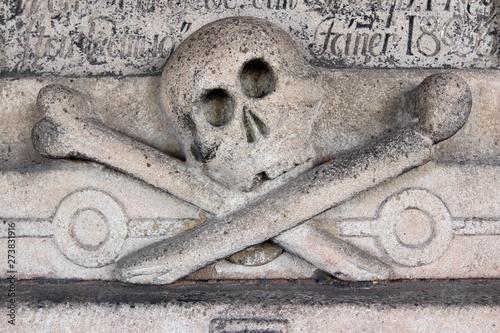Fotografia, Obraz  Relief of the skull