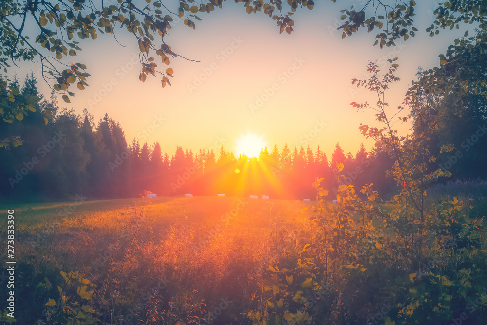 Fototapety, obrazy: Summer night sunset view from Sotkamo, Finland.