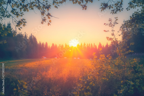 Poster de jardin Morning Glory Summer night sunset view from Sotkamo, Finland.