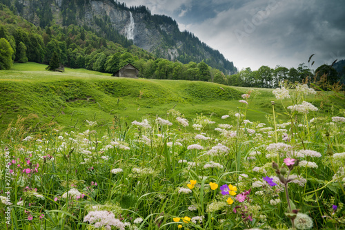 Vászonkép  colorful wildflower meadow and old hut in a mountain landscape with waterfall