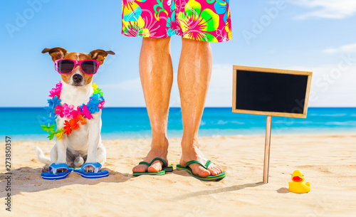 Photo Stands Crazy dog dog and owner summer holidays