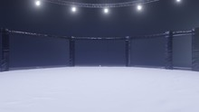 Mma Arena Side View. Empty Fig...