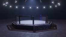 Mma Arena. Empty Fight Cage Under Lights. 3D Rendering