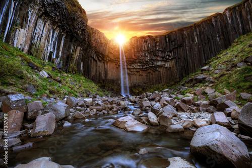 Foto auf Gartenposter Wasserfalle Svartifoss waterfall with basalt pillars, Iceland