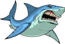 Fierce Shark Attacks